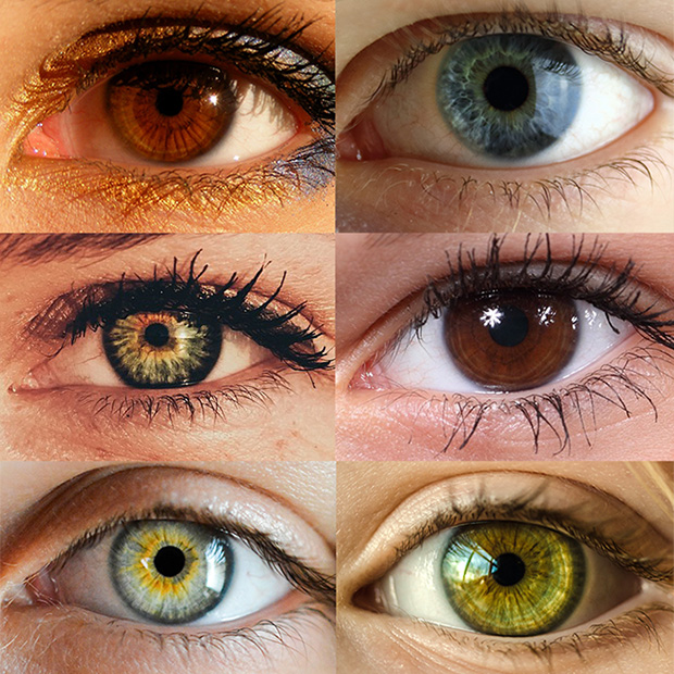 Eye Color Trivia Zanesville Oh Vision Source Dr Rice And Dr